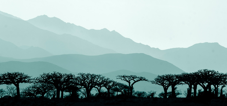 Socotrwff