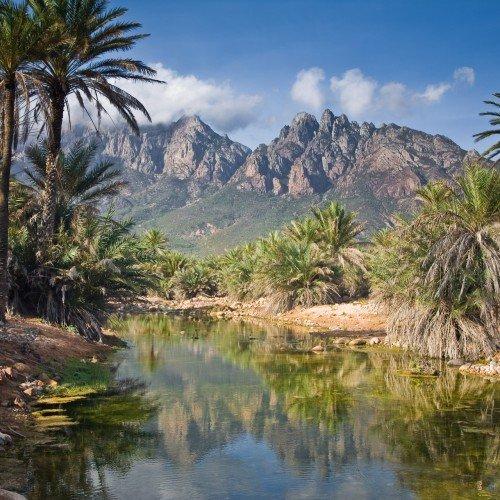 Isla de Socotra, Yemen. Foto (c): çngel Mart'nez Bermejo